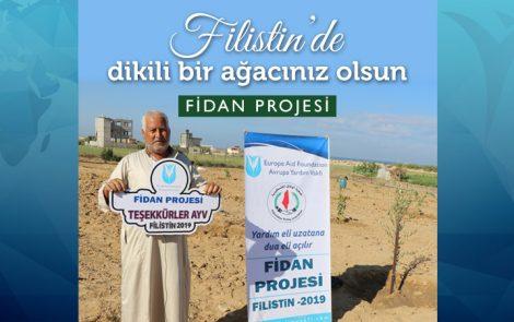 Filistin için Fidan