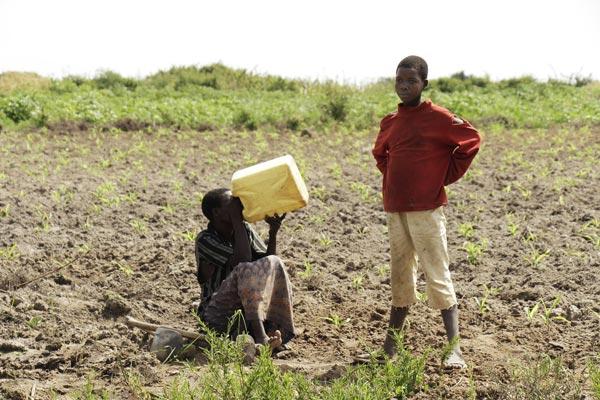 Afrika su kuyusu yardımı - Afrika su kuyusu bağışı