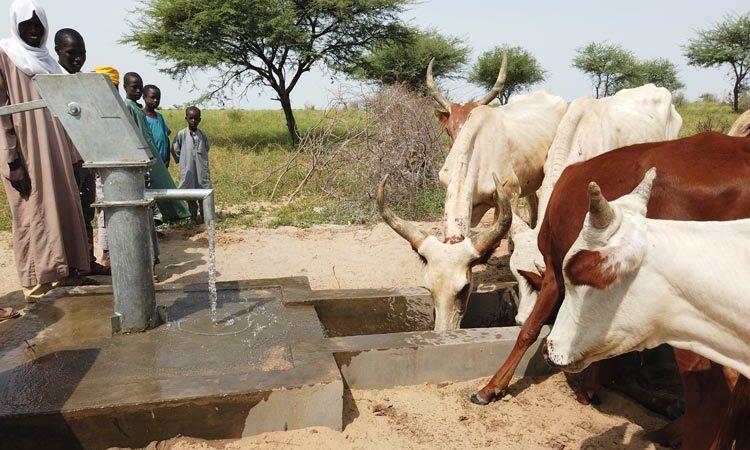 tanzanya'da su kuyusu açtırmak - tanzanya su kuyusu yardımı - tanzanya su kuyusu bağış