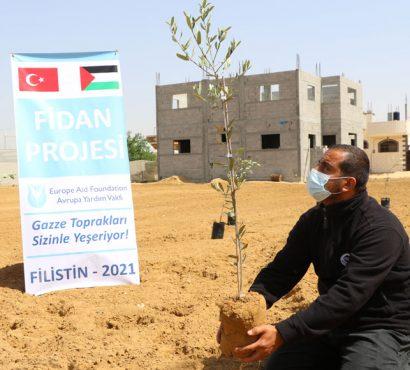 Filistin Fidan Bağış Projesi 2021